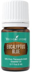 Young Living Eucalyptus Blue