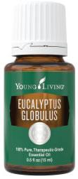 Young Living Eucalyptus globulus